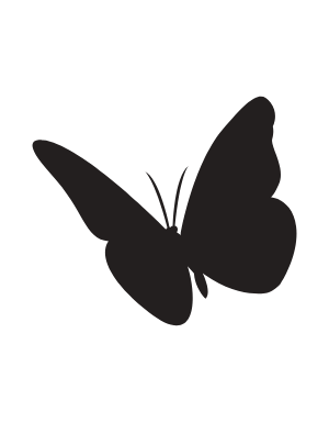 Butterfly The Career Upgrade